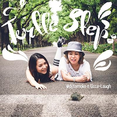 Turtle Steps