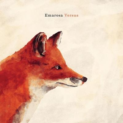 Versus (アナログレコード)
