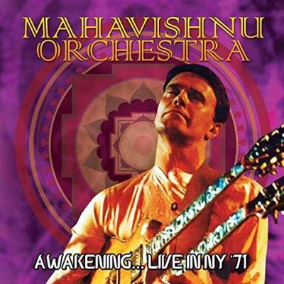 Awakening...Live In Ny '71
