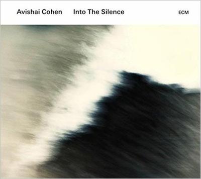 Into The Silence (2枚組アナログレコード)