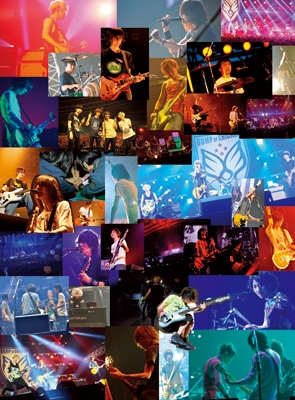 BUMP OF CHICKEN 結成20周年記念Special Live「20」 (DVD)