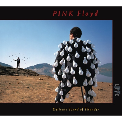 Delicate Sound Of Thunder (Live)(2CD)