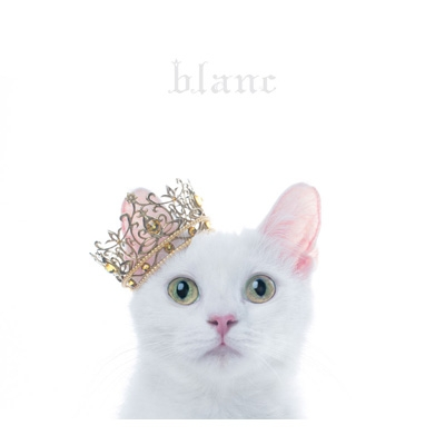 "BEST SELECTION ""blanc"" 【初回生産限定盤B】(+DVD)"