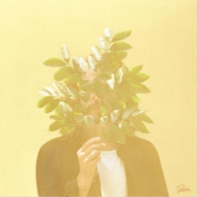 French Kiwi Juice (2枚組アナログレコード/Roche Musique)
