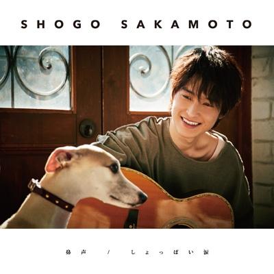 鼻声/しょっぱい涙 【初回限定盤】(+DVD)