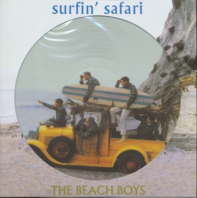 Surfin Safari (Pictre Disc)
