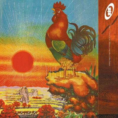Don Solaris (2枚組/180グラム重量盤レコード)