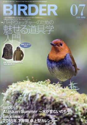 BIRDER (バーダー)2018年 7月号