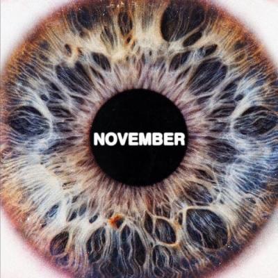 November (アナログレコード)