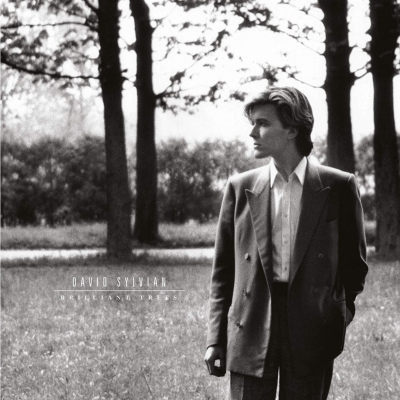 Brilliant Trees デラックスエディション (180グラム重量盤レコード/1stアルバム)