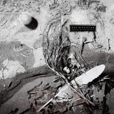 Secrets Of The Beehive デラックスエディション (180グラム重量盤レコード/4thアルバム)