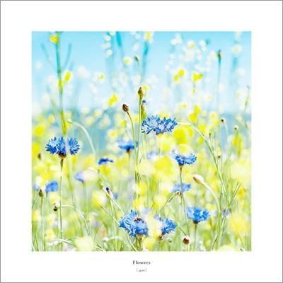 Flowers 【数量限定盤】(10インチアナログレコード)