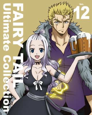 FAIRY TAIL -Ultimate collection-Vol.12