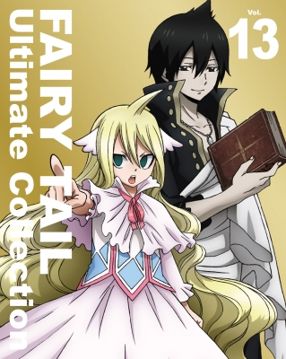 FAIRY TAIL -Ultimate collection-Vol.13