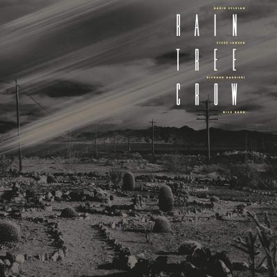 Rain Tree Crow (180グラム重量盤レコード)