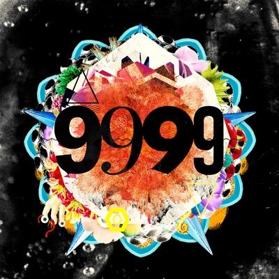 9999 (2枚組アナログレコード)