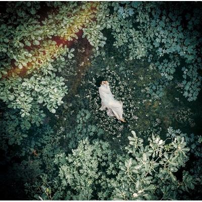 スターライトキセキ/Ark 【初回限定盤B】