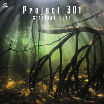 Strategy / Dusk (7インチシングルレコード)