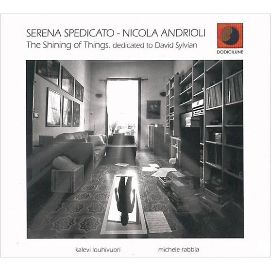 Shining Of Things (Dedicated To David Sylvian)