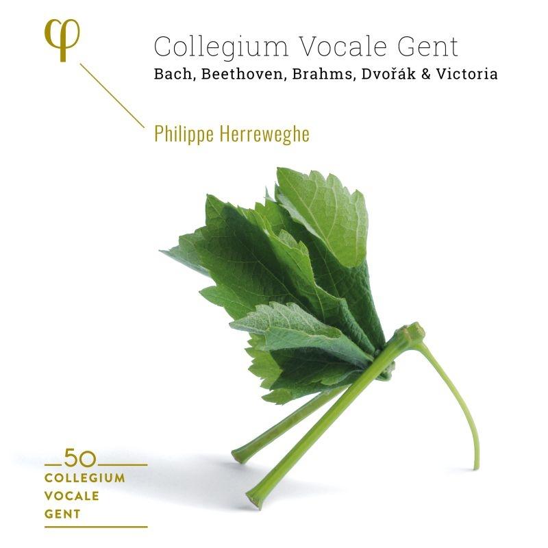 『コレギウム・ヴォカーレ結成50周年ボックス〜ビクトリア、J.S.バッハ、ベートーヴェン、ブラームス、ドヴォルザーク』 フィリップ・ヘレヴェッヘ(6CD)