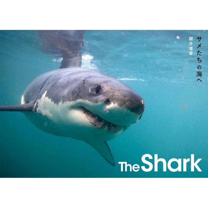 The Shark サメたちの海へ