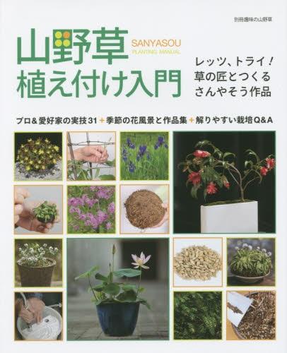 山野草植え付け入門 別冊趣味の山野草