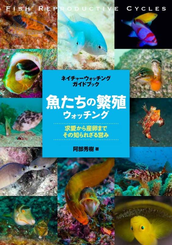 魚たちの繁殖ウォッチング 求愛から産卵まで、その知られざる営み ネイチャーウォッチングガイドブック