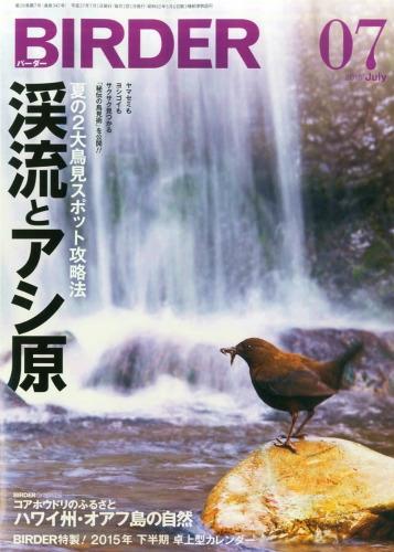 Birder (バーダー)2015年 7月号