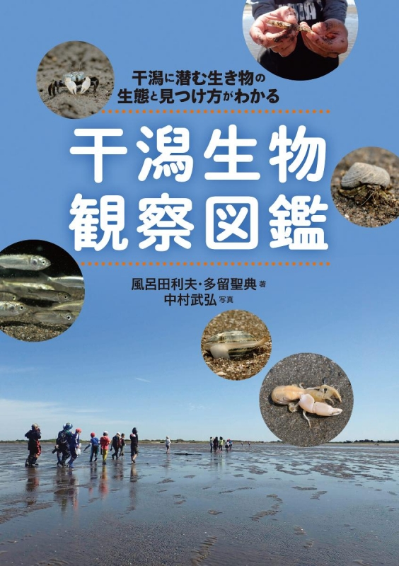 干潟生物観察図鑑 干潟に潜む生き物の生態と見つけ方がわかる