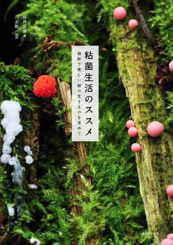 粘菌生活のススメ 奇妙で美しい謎の生きものを求めて