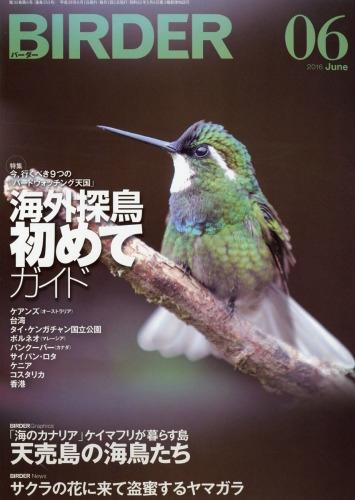 Birder (バーダー)2016年 6月号