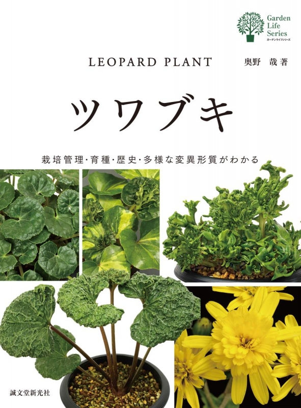 ツワブキ 栽培管理・育種・歴史・多様な変異形質がわかる ガーデンライフシリーズ