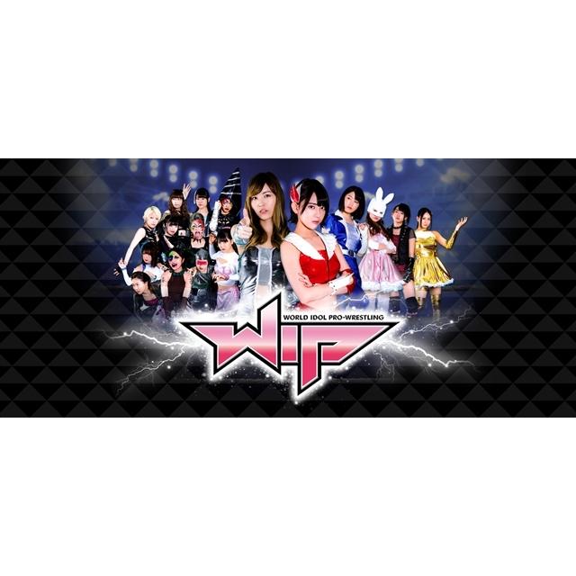 豆腐プロレス The REAL 2017 WIP CLIMAX in 8.29 後楽園ホール (DVD)