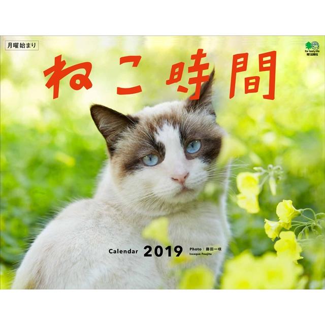 カレンダー2019 ねこ時間 壁掛けタイプ B4ワイド