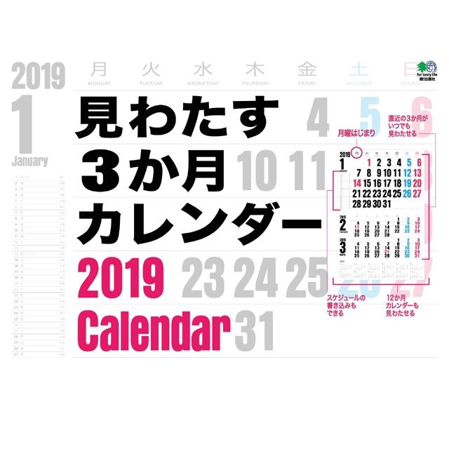 カレンダー2019 見わたす3か月カレンダー 壁掛けタイプ B4ワイド