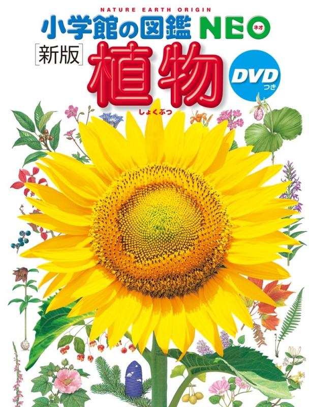新版 植物DVDつき 小学館の図鑑NEO