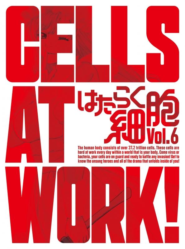 はたらく細胞 6 【完全生産限定版】
