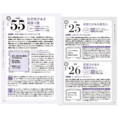 銀のイルカ 51
