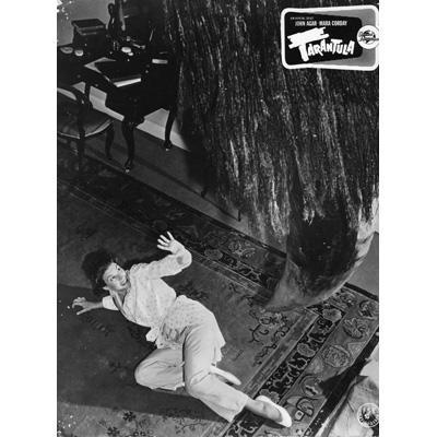世紀の怪物 タランチュラの襲撃 -HDリマスター版- | HMV&BOOKS online ...
