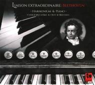 ハーモニウムとピアノによるベートーヴェン作品集
