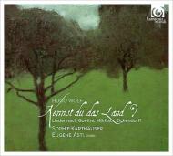 ゾフィー・カルトホイザーによるヴォルフの歌曲集