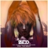 ZEDD、ニュー・シングルをリリース!