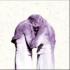 ジ・アントラーズ、3rdアルバム『Familiars』