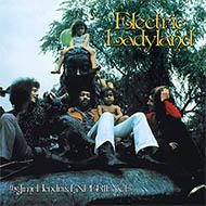 【輸入盤は在庫限り】ジミヘン最高傑作『エレクトリック・レディランド』50周年記念デラックス盤