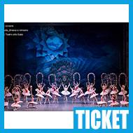 【チケット情報】東京バレエ団「海賊」