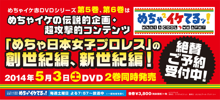 めちゃイケ赤DVD